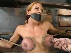 Bdsm, Shannon kelly swallow, Drtuber.com