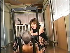 Face Assise, Bbw facesitting mature, Xhamster.com