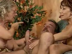 Orgy, Shemale orgys, Xhamster.com