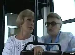 Bus, Public, Public erection, Gotporn.com
